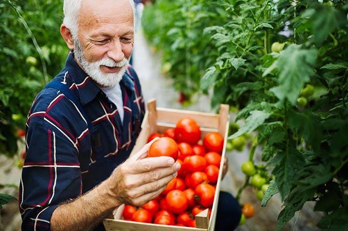 Compléments nutritionnels des personnes âgées à domicile : conseils pour l'aidant